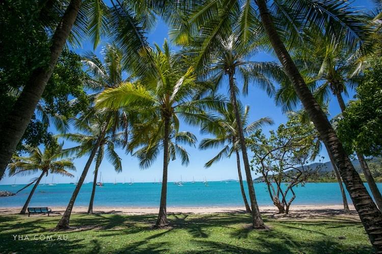 Airlie Beach YHA - Airlie Beach (39).jpg