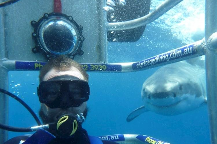 Shark Cage Dive Special - Shark Cage Dive.jpg