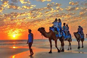Broome Sightseeing Tour With Optional Camel Ride tile image