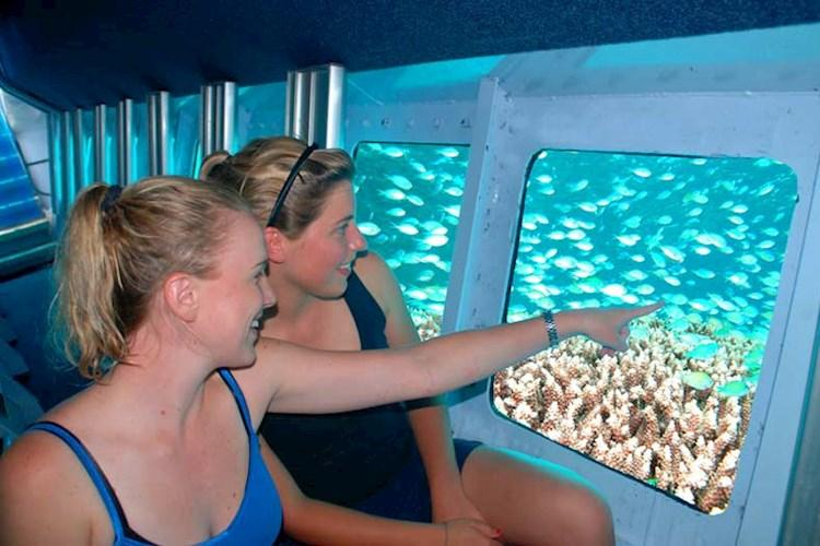 Rainforest-and-Great-Barrier-Reef-Tour-Reef-Semi-Submersible.jpg