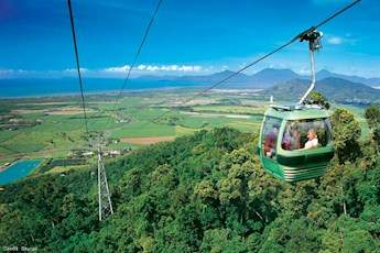 Rainforest skyrail and great barrier reef tour tile image