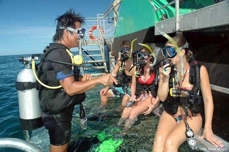 Rainforest-Skyrail-and-Great-Barrier-Reef-Tour-Introductory-Scuba-Dive.jpg