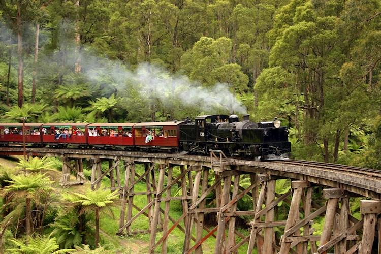 Puffing Billy train_shutterstock.jpg