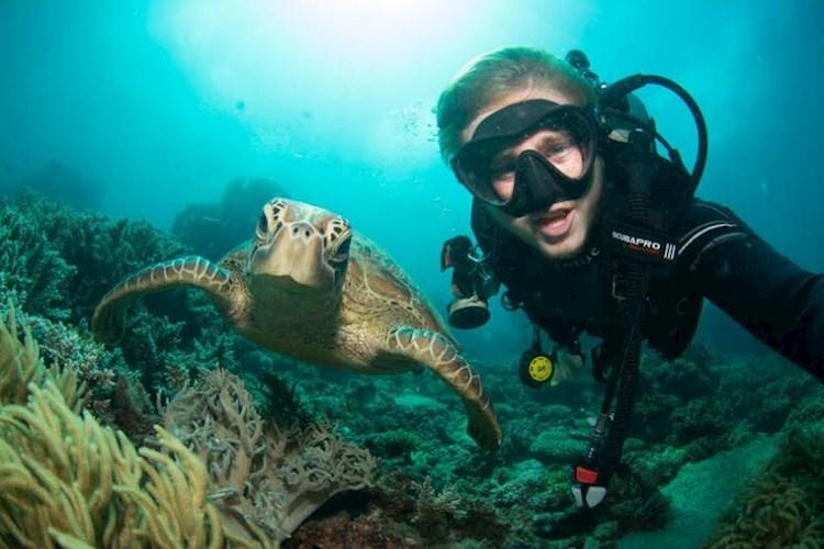 Great Barrier Reef Snorkelling Adventure- Selfie with a turtle.jpg