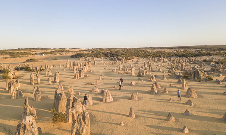 The Pinnacles, north of Lancelin