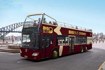 Open Top Sightseeing Bus tile image