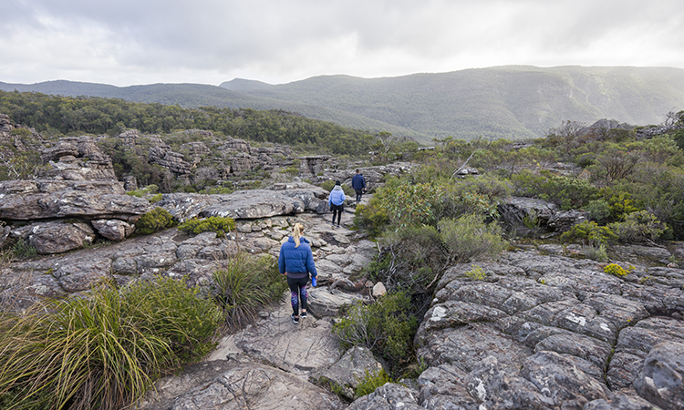Pinnacle Hike near Grampians Eco YHA