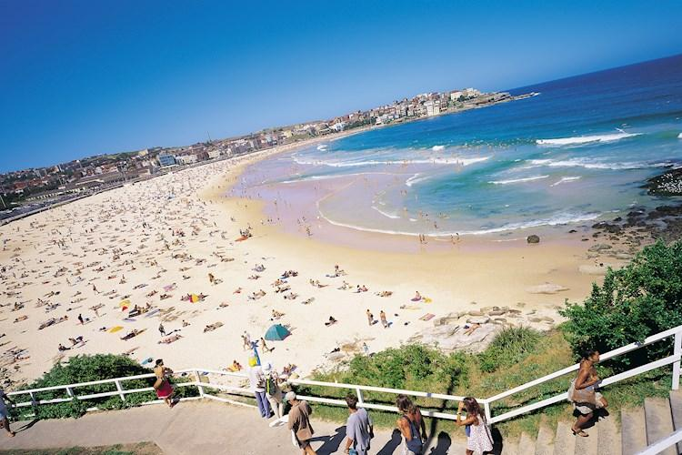 Bondi Beach panorama_Tourism NSW (1).jpg
