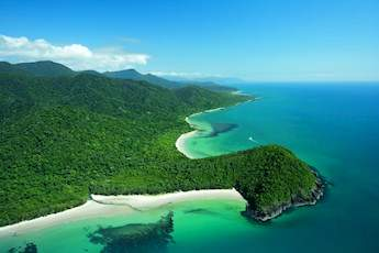1 Day Daintree Rainforest Tour tile image
