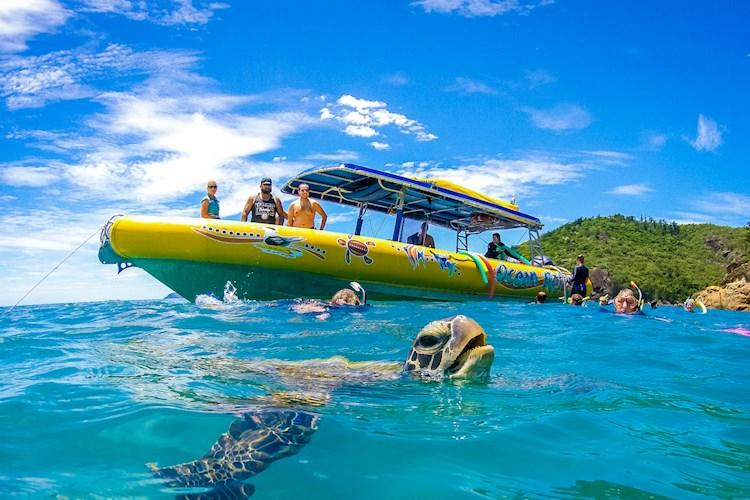 1 Day Whitsundays Tour- Meet the locals