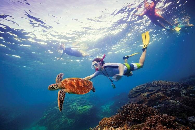 Great Barrier Reef_snorkelling_credit Tourism Australia_644152-19.jpg