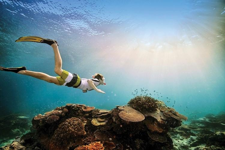 Great Barrier Reef_snorkelling_credit Tourism Australia_644153-19.jpg