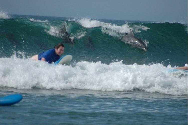 Surf Camp - Girl Surfing With Dolphins.jpg