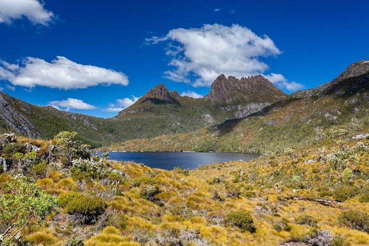 Cradle mountain shutterstock_315045518.jpg