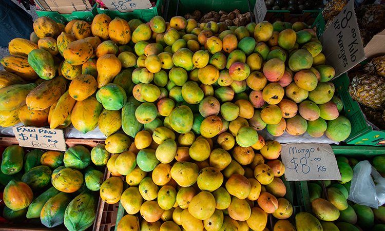 Broome Markets Mangoes Tourism Australia