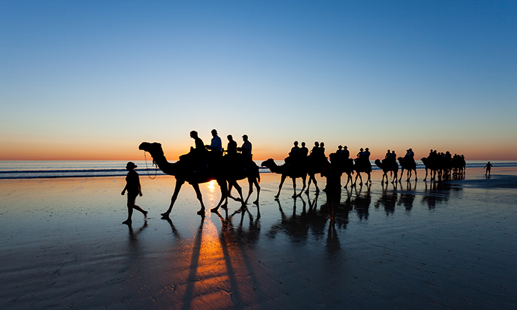 Cable Beach Camel Ride Shutterstock.jpg