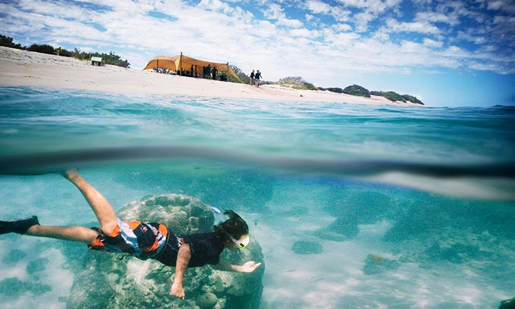 Escape Backpackers Ningaloo Credit Sal Salis