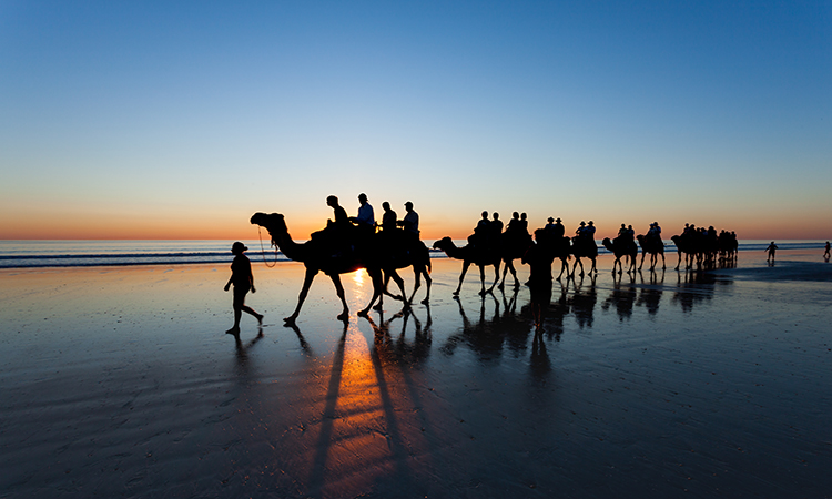 Camel ride on Cable Beach near Broome YHA