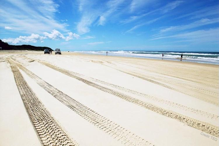 Fraser-Island-Escape-From-Noosa-75-Mile-Beach.jpg