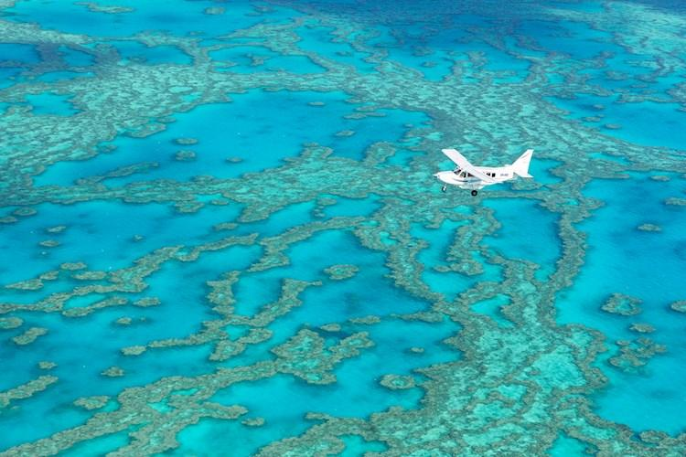 Birds Eye View of the Great Barrier Reef.jpg