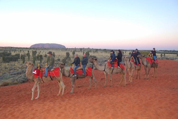 Ayers Rock Outback Pioneer Lodge Backpackers Hostel
