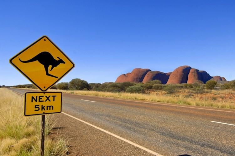 Uluru Day Tour From Alice Springs- Welcome to Alice Springs- Watch for Kangaroos