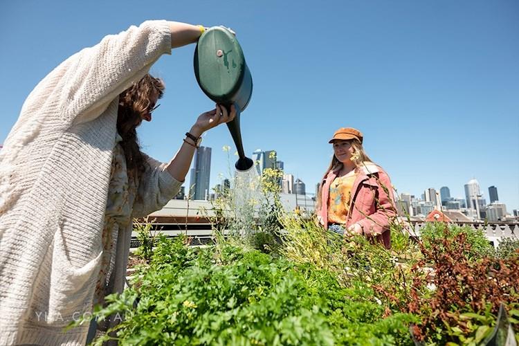 Melbourne Metro YHA_rooftop_herb garden_2019.jpg