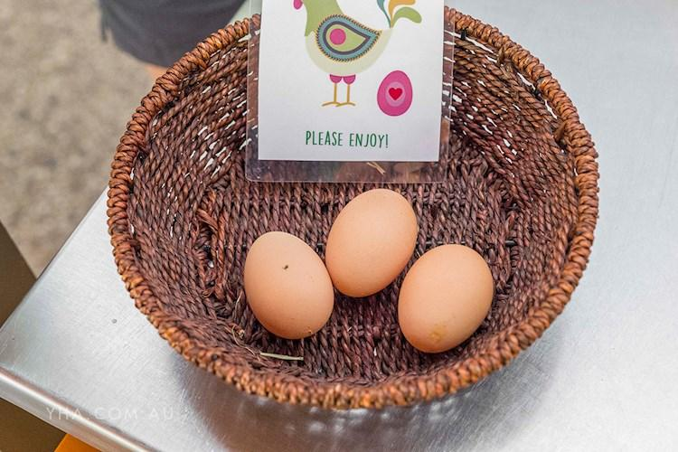 Grampians Eco YHA_eggs_kitchen_2017.jpg