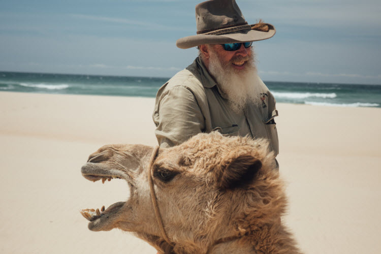 This camel who's taking the mickey out of that poor bloke's beard