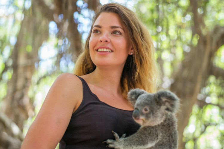2. Breakfast with the koalas at Magnetic Island YHA