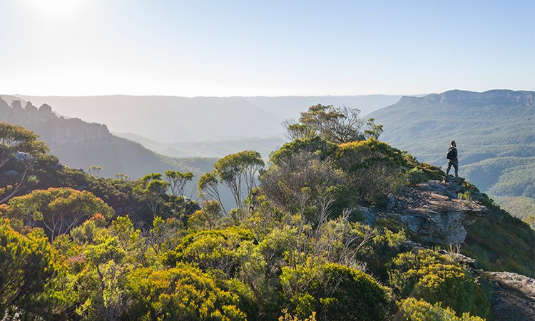 Exploring the surrounds of Blue Mountains YHA