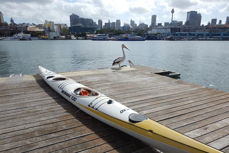 Kayak Sydney Harbour- High quality kayaks