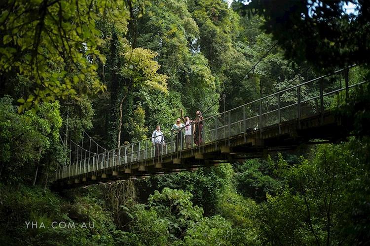 Bellingen YHA - Dorrigo National Park