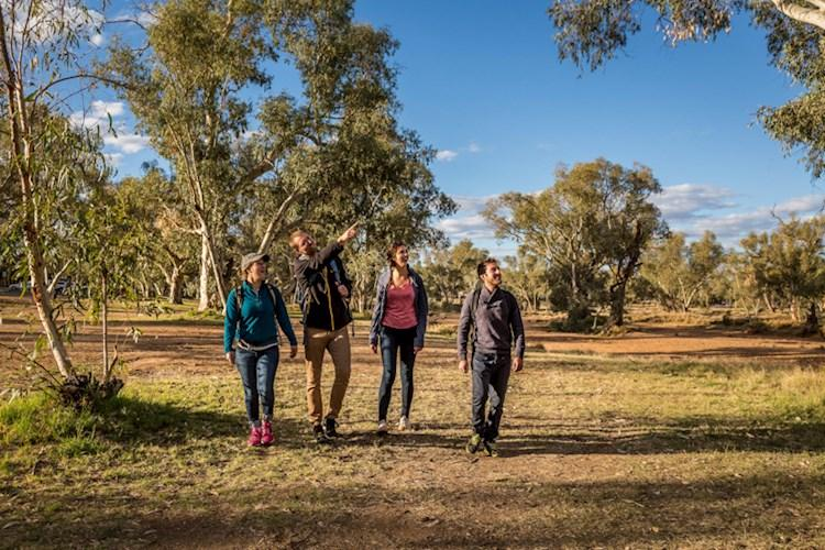 Surrounded By The Beautiful Outback - Alice Springs YHA