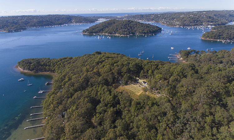 Pittwater Bush Regenration Weekends