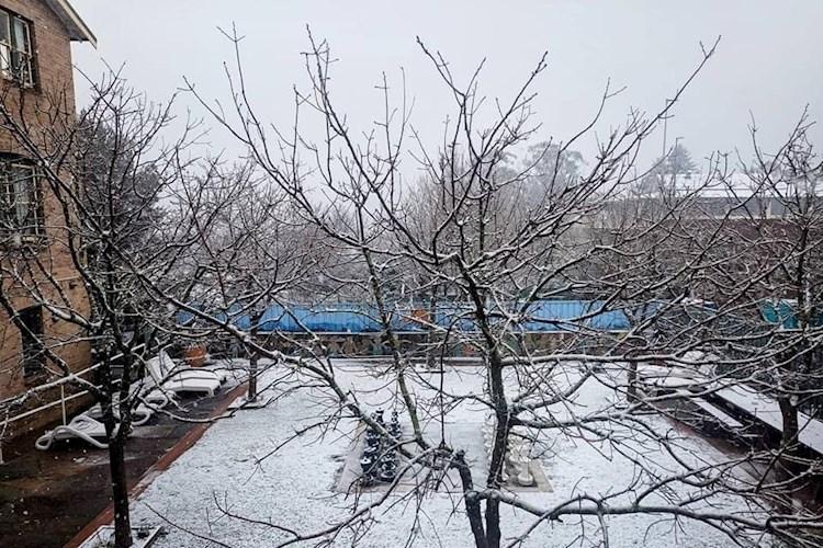 BLUM_Snowfall2_June2021.jpg